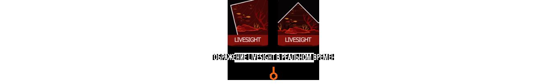 Технология эхолота LiveSight